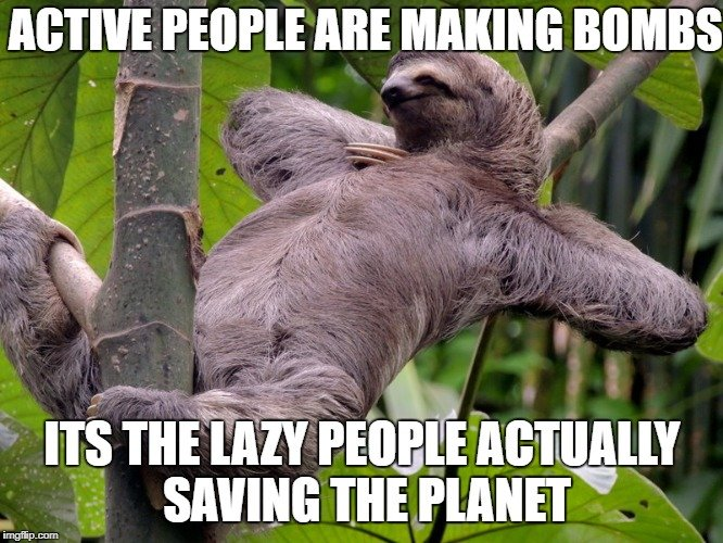 lazy sloth meme pc boot issues