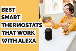 Top 7 Smart Thermostats That Work With Alexa in 2021